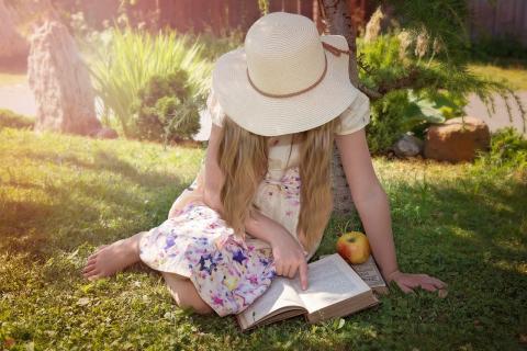 zomerromans